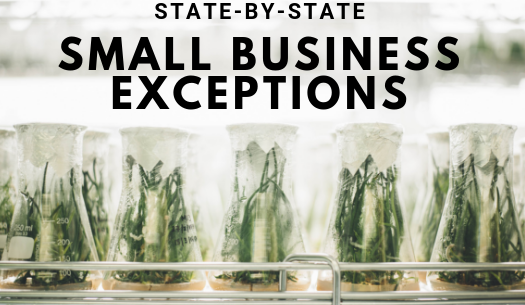 How small is small? Making sense of economic nexus small seller exceptions